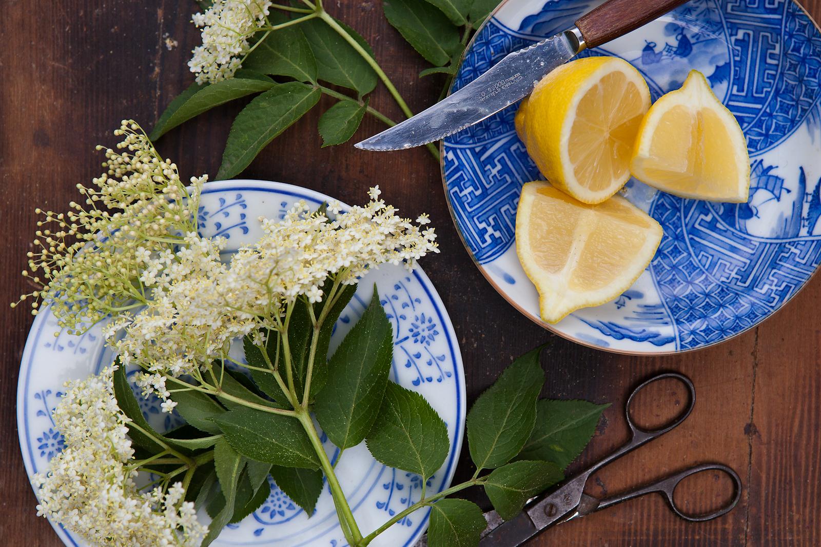 Elderflower & lemon for a summery cordial